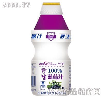 恒大梦野生蓝莓汁450ml