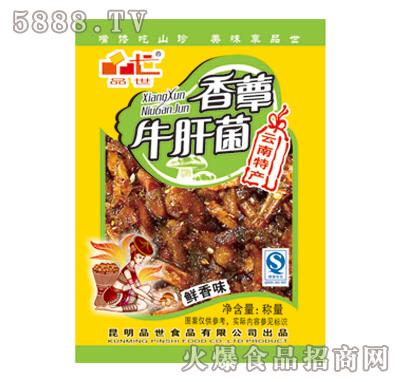 牛肝菌-鲜香味散称