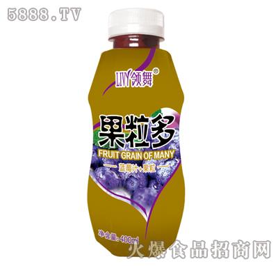 400ml领舞果粒多(蓝莓汁+果粒)