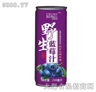 240毫升聚红野生蓝莓汁