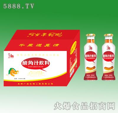 大马邦酸角汁310ml
