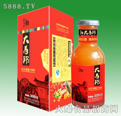 大马邦ACE果蔬汁285ml
