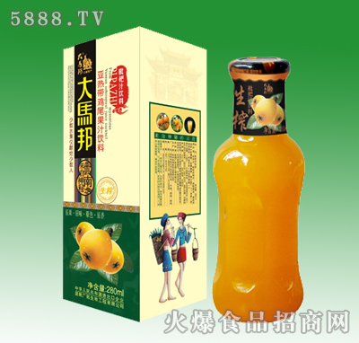 大马邦琵琶汁饮料280ml