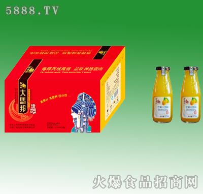 大马邦芒果汁饮料277mlX15