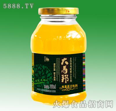 大马邦西番莲汁饮料258ml