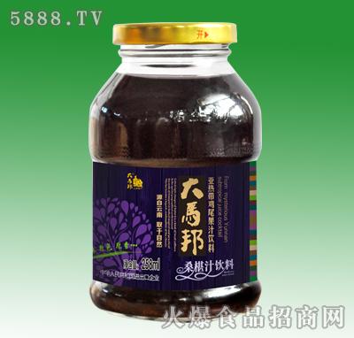 大马邦桑葚汁饮料258ml