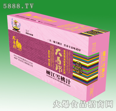 大马邦丽江雪桃汁258ml箱装