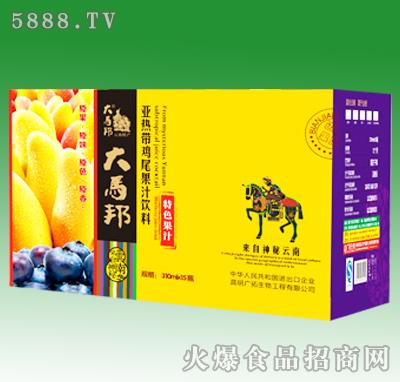 大马邦蓝莓芒果果汁混合装310mlX15