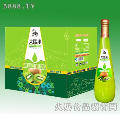 858ml大马邦猕猴桃汁饮料