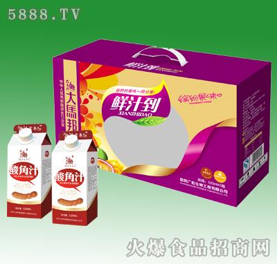 520mlx5大马邦酸角汁