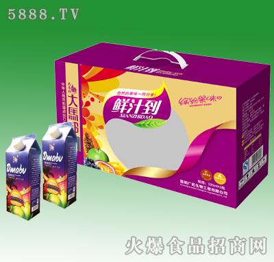 520mlX5大马邦西番莲汁