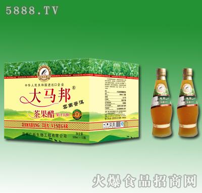 500mlx12瓶大马邦茶果醋果汁饮料