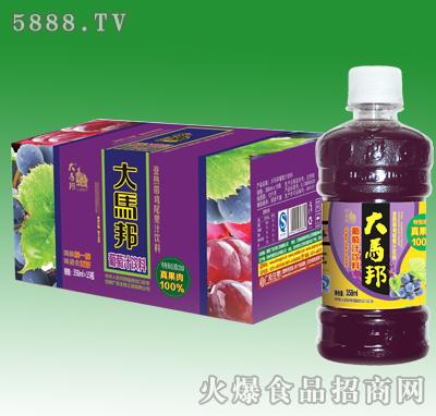 358mlx15瓶大马邦葡萄汁汁(加果肉)