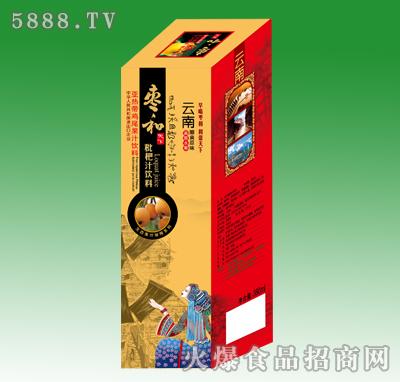 350ml枣和琵琶汁饮料