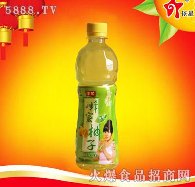 华龙蜂蜜柚子饮料500ml
