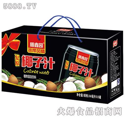 膳鑫园复原椰子汁240mlx8罐铁罐礼盒