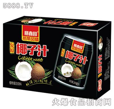 膳鑫园复原椰子汁240mlx16罐/20罐/24罐箱装
