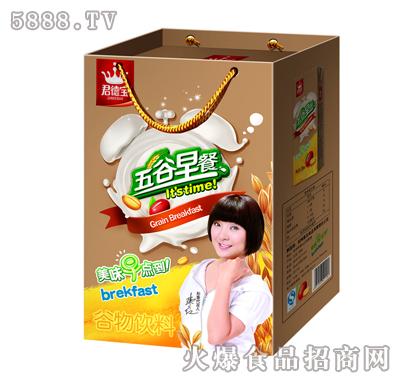 君德宝五谷早餐谷物饮料250mlX16盒