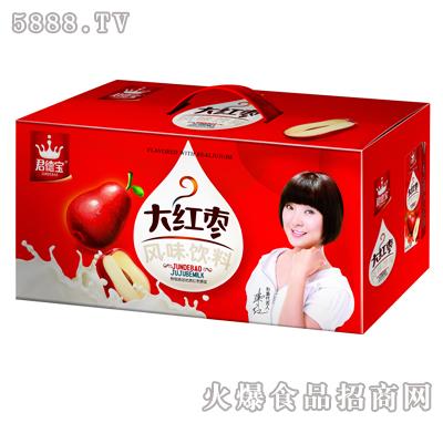 君德宝大红枣风味饮料箱装
