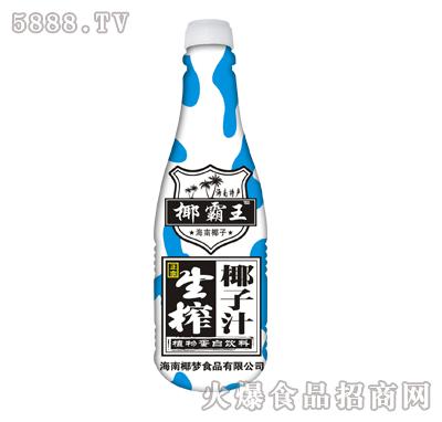 椰霸王生榨椰子汁500mlx15