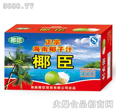 240ml椰臣海南椰子汁礼盒