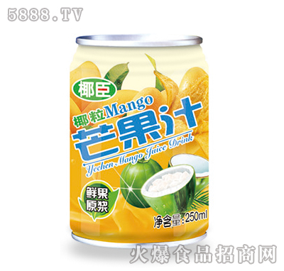 250ml椰臣椰粒芒果汁