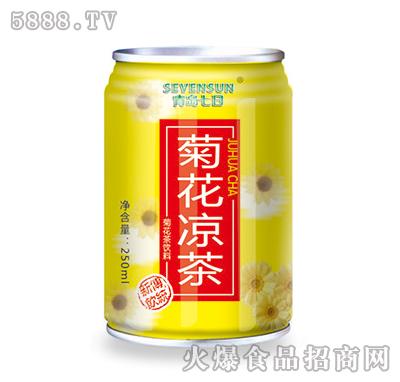 250ml青岛七日菊花凉茶