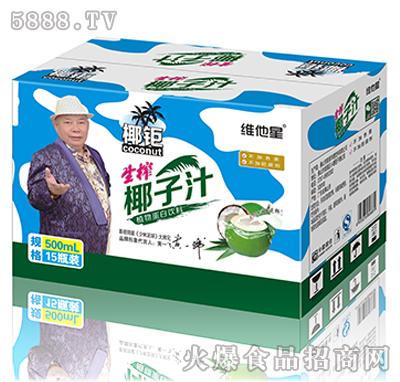 500ml椰钜迷彩椰子汁箱装