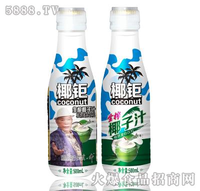 500ml椰钜迷彩椰子汁