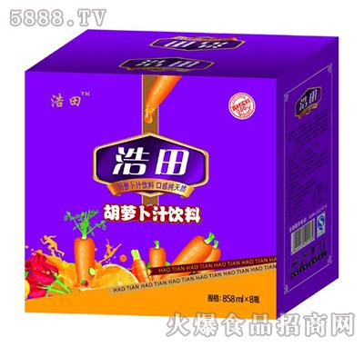 浩田胡萝卜汁饮料箱装858mlx8