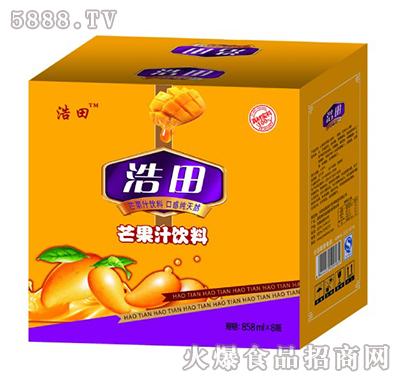 浩田芒果汁饮料箱装858mlx8