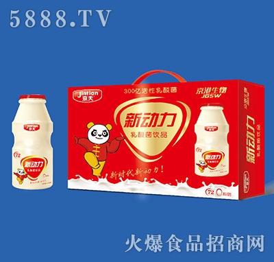 京天新动力乳酸菌饮品100mlx20瓶礼盒