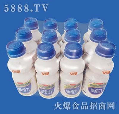 京天新动力乳酸菌饮品338gx12瓶(塑包)