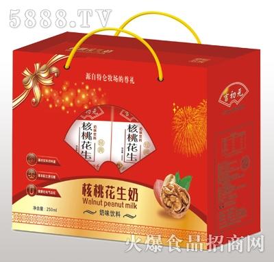 金娇阳核桃花生奶礼盒