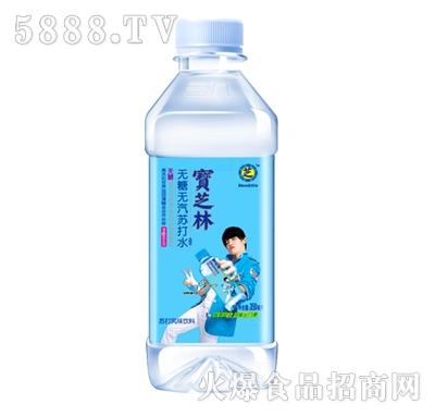 宝芝林原产地苏打水