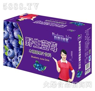 鑫益品堂野生蓝莓果汁饮料(箱装)