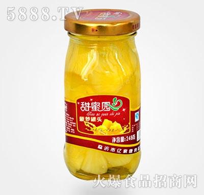 248克菠萝水果罐头