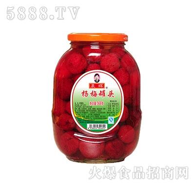 晨辉568杨梅罐头