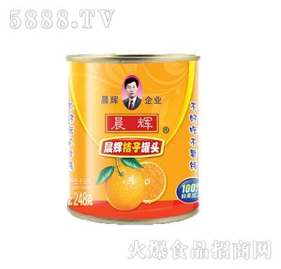 晨辉248g桔子罐头