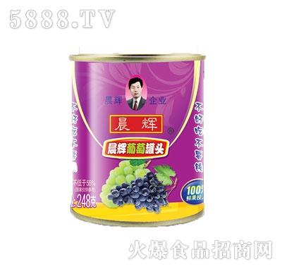 晨辉248g葡萄罐头