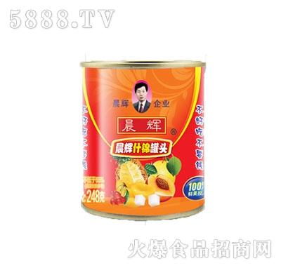 晨辉248g什锦罐头