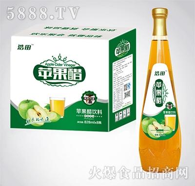 308mlx10瓶浩田苹果醋