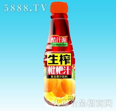 酷汁源生榨琵琶汁500ml