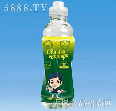 红乐能量特饮运动饮料(绿)550ml×15瓶