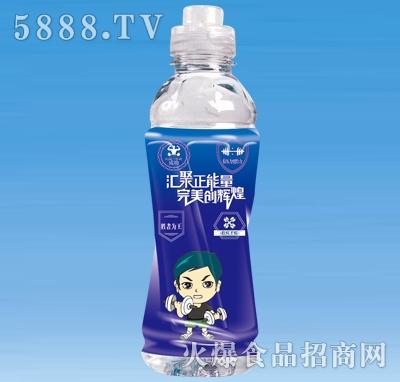 红乐能量特饮运动饮料(蓝)550ml×15瓶
