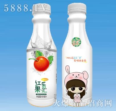 红乐果汇山楂&苹果果汁饮料500ml