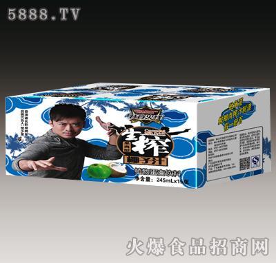 特穿火线生榨椰子汁果肉型245mlX15