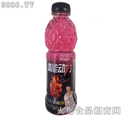 体能动力维生素饮料水蜜桃味600ml