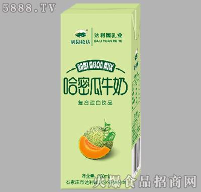 250ml哈密瓜牛奶复合蛋白饮品