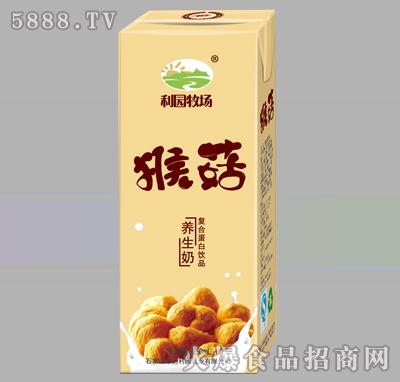 利园牧场猴菇养生奶250ml